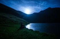 In the moonlight von Artem Boyur