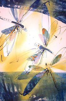 Libellen am Wasser von Heike Jäschke