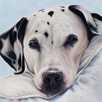 Dalmatiner Anka by Renate Berghaus