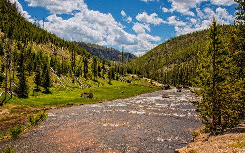 Yellowstone20140621-249da