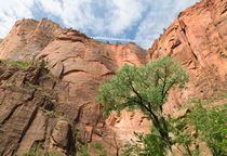 Zion Canyon Walls von John Bailey