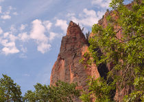A Rocky Point At Zion Canyon von John Bailey