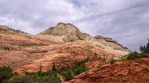 Colorful Mesas At Zion National Park von John Bailey