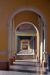 Spanish Arches Granada Nicaragua by John Mitchell
