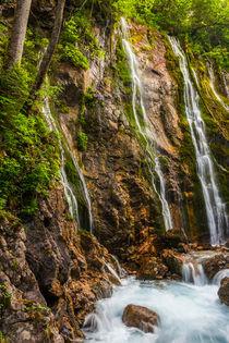ein Ort, wo sich die Naturgeister treffen by moqui