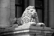 Vancouver Art Gallery Lion Sculpture by John Mitchell