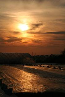 Evening sun over a field von atari-frosch