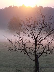 Sonnenaufgang von Ralf Wolter