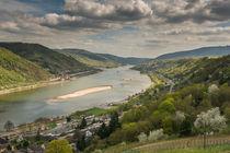 Rheintal bei Bacharach 22 von Erhard Hess