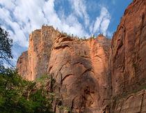 Meet At The Corner Of Zion Canyon von John Bailey