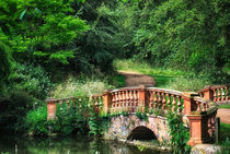 The Terracotta Bridge von Vicki Field