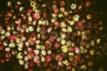 Rotten apples  von Igor Korionov