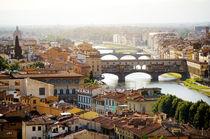 Florence panoramic view by Tania Lerro