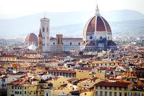 Florence panoramic view von Tania Lerro