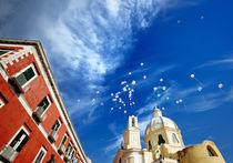 Procida. Italy by Tania Lerro