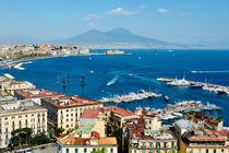 Naples panoramic view von Tania Lerro