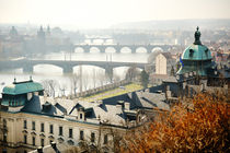 Vltava from Letna park, Prague by Tania Lerro