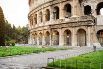 Colosseum, Rome, Italy by Tania Lerro