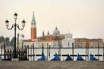 Venice view from Piazza San Marco by Tania Lerro