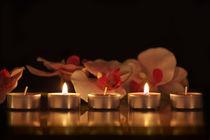 Meditation von Christine Sponchia