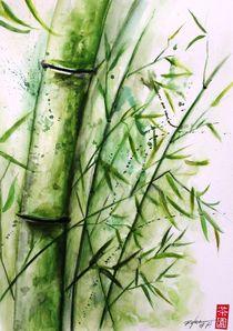 bamboo by Rodrigo Chaem