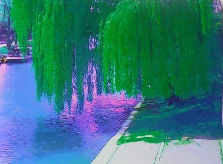 Befunky-dscn0416-dot-jpg-green-willow-mini