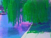 Vibrant weeping willow by Amanda Elizabeth  Sullivan
