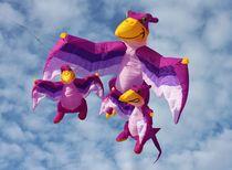 Drachen-familie-michael-beilicke