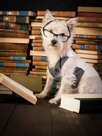 Professor Westie by Edward  Fielding