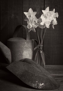 Fresh Picked Flowers Black and White by Edward  Fielding
