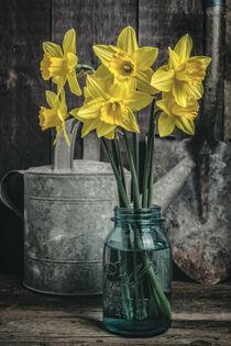 Flowers in the shed von Edward  Fielding