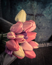 Spring Tulips by Edward  Fielding
