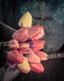 Spring Tulips von Edward  Fielding