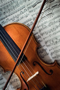 Violine by gibleho