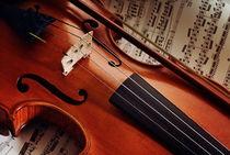 Alte Violine von gibleho