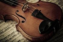 Geige von gibleho