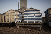 Beauty and Whitstable Beast by Dan Davidson