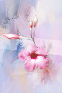 Painted Flowers by Judy Hall-Folde
