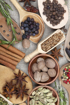 Spice-herb-vegetable-77