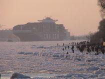 Riesen Pott auf Eis /Bit Ship on ice von Kathy Lemburg