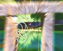 The Wheel von Michael Naegele