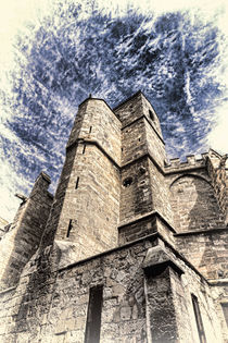 Cathedrale Saint-just-et-saint-pasteur De Narbonne von Thomas Klee