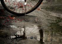 Fahrrad bei Regen / Cycle and rain von Kim Schindhelm