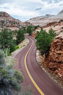 Bergstrasse im Zion Canyon von caladoart