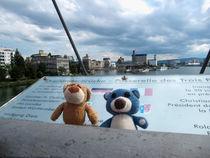 Zwei Bären im Dreiländereck von Olga Sander