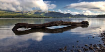 Coniston Water von David Pringle