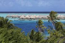 Bora Bora Sofitel Water Bungalows by Norbert Probst