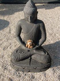 Meditieren mit Buddha by Olga Sander