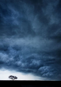 Blue landscape 1 by Ewa Bednarek