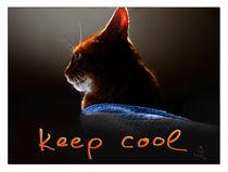 keep cool by seiltaenzerin
